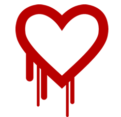 Heartbleed SSL oversight